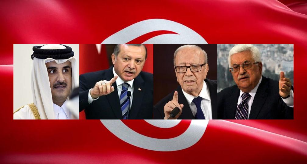 3 مكالمات وردت على الباجي حول الاحتجاجات : تدخّل سافر من أردوغان.. لباقة عبّاس.. ونباهة تميم!