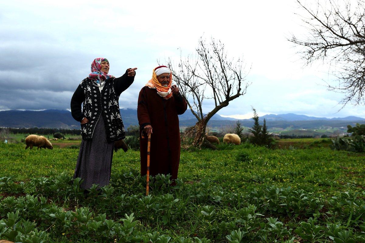 غار الدماء / جندوبة : الحاج عمارة وخضراء…قصة حبّ أثمرت 67 حفيدا