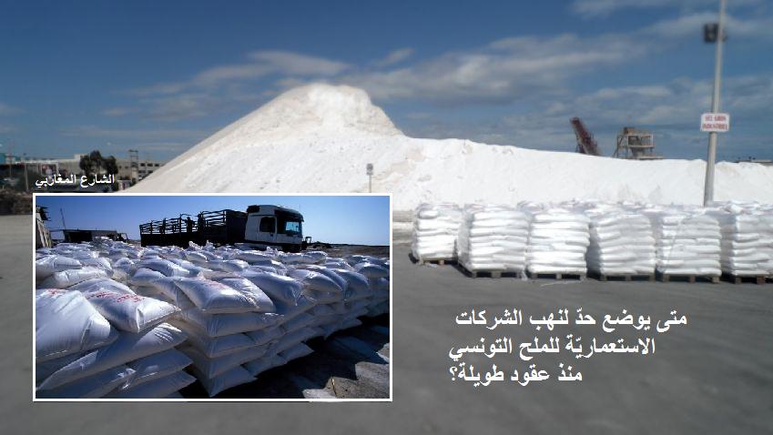حين ينطق مدير عام المناجم : تطوير قطاع الملح في تونس يتطلب مراجعة العقود القديمة!