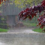 طقس اليوم: أمطار غزيرة مع تساقط البرد