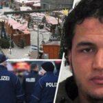 قضية أنيس العمري تكشف عن شبكة لتدليس الوثائق بسفارة إيطاليا بتونس !