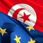 الاتحاد الأوروبي: بعثة بـ80 مُلاحظا لمراقبة الانتخابات البلدية بتونس