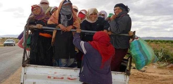 سيدي بوزيد: انقلاب شاحنة تقلّ 20 عاملة فلاحة