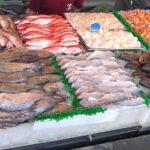 وزارة الفلاحة: 63،1 مليار مداخيل صادرات الصيد البحري