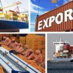 وزارة الفلاحة: 109.6% نسبة تغطية الواردات بالصادرات في 5 أشهر
