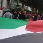 """مساء اليوم: مسيرة وطنية لـ""""توانسة من أجل فلسطين"""""""