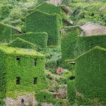 «المملكة الخضراء» ... قرية صينية مهجورة (صور)