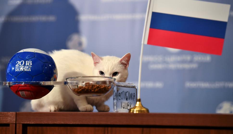 """""""عرّاف"""" المونديال يتكهّن بفوز المنتخب الروسي على السعودية"""