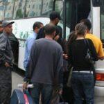 وزارة النقل: إجراءات استثنائية بمناسبة عيد الفطر