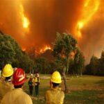 كاليفورنيا: حرائق الغابات تشرّد الآلاف والحكومة تعلن الطوارئ
