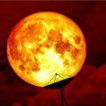 الليلة بمدينة العلوم : متابعة أطول خسوف قمر في القرن 21