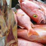 الداخلية: حجز لحوم وأسماك فاسدة وتحرير 113 مخالفة صحية