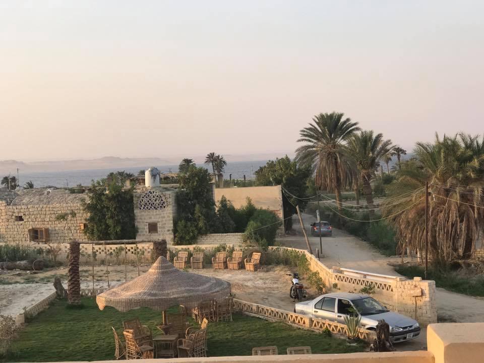 """صور/ تقع بالفيوم: ماذا تعرف عن قرية """"تونس"""" المصريّة ؟"""