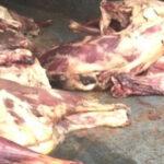 صفاقس: حجز خضر وغلال ولحوم فاسدة