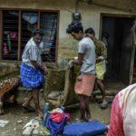الهند: الأفاعي تغزو البيوت بعد انحسار الفيضانات