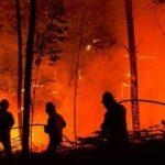 بعد اليونان .. البرتغال يحترق