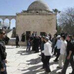 """القدس المُحتلّة: 150 متطرّفًا إسرائيليًا يقتحمون """"الأقصى"""""""