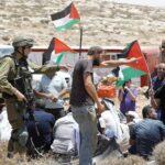 60 منظمة دولية تقود حملة لانهاء احتلال فلسطين