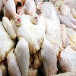 تطاوين: حجز 720 كلغ من لحوم الدواجن والأجبان الفاسدة