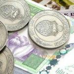 سعيدان: المصدر الأسوأ وراء ارتفاعاحتياطي العملة الصعبة لتونس