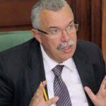 البحيري: ليس لنا شروط في المشاورات حول مصير الحكومة
