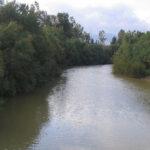 وزارة الفلاحة تُحذّر سُكّان المناطق المُجاورة لوادي مجردة