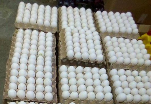 وزارة التجارة تحجز 4800 بيضة
