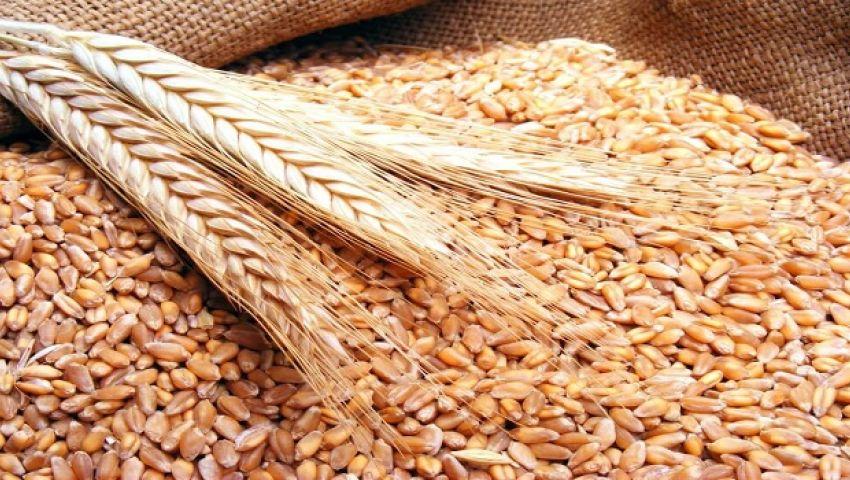 الجزائر تقاطع السوق الفرنسية وتشتري القمح من روسيا