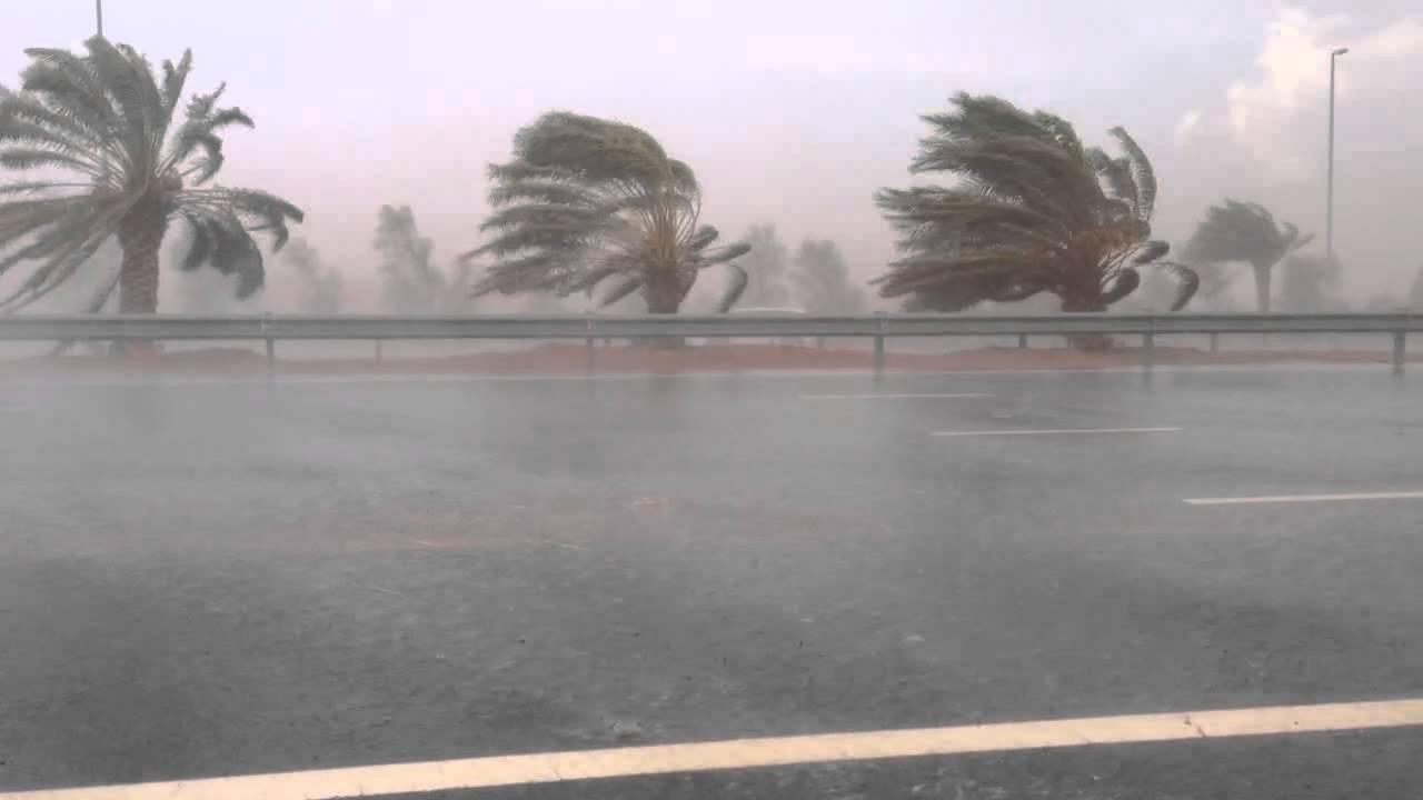 فيديو: الرّصد الجوي يحذّر من أمطار غزيرة ورياح قوية بهذه الجهات