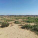 """تمسح 113 هكتارا: استرجاع """"أراضي السيالين"""" بصفاقس"""