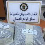 ميناء حلق الوادي: حجز مخدّرات لدى مسافر أجنبي