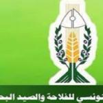 اتحاد الفلاحين يرفض تسقيف الأسعار ويُساند احتجاجات منظوريه