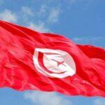 في اليوم العالمي لحقوق الإنسان: تونس تُؤكّد التزامها بتعزيز مكاسب الانتقال الدّيمقراطي