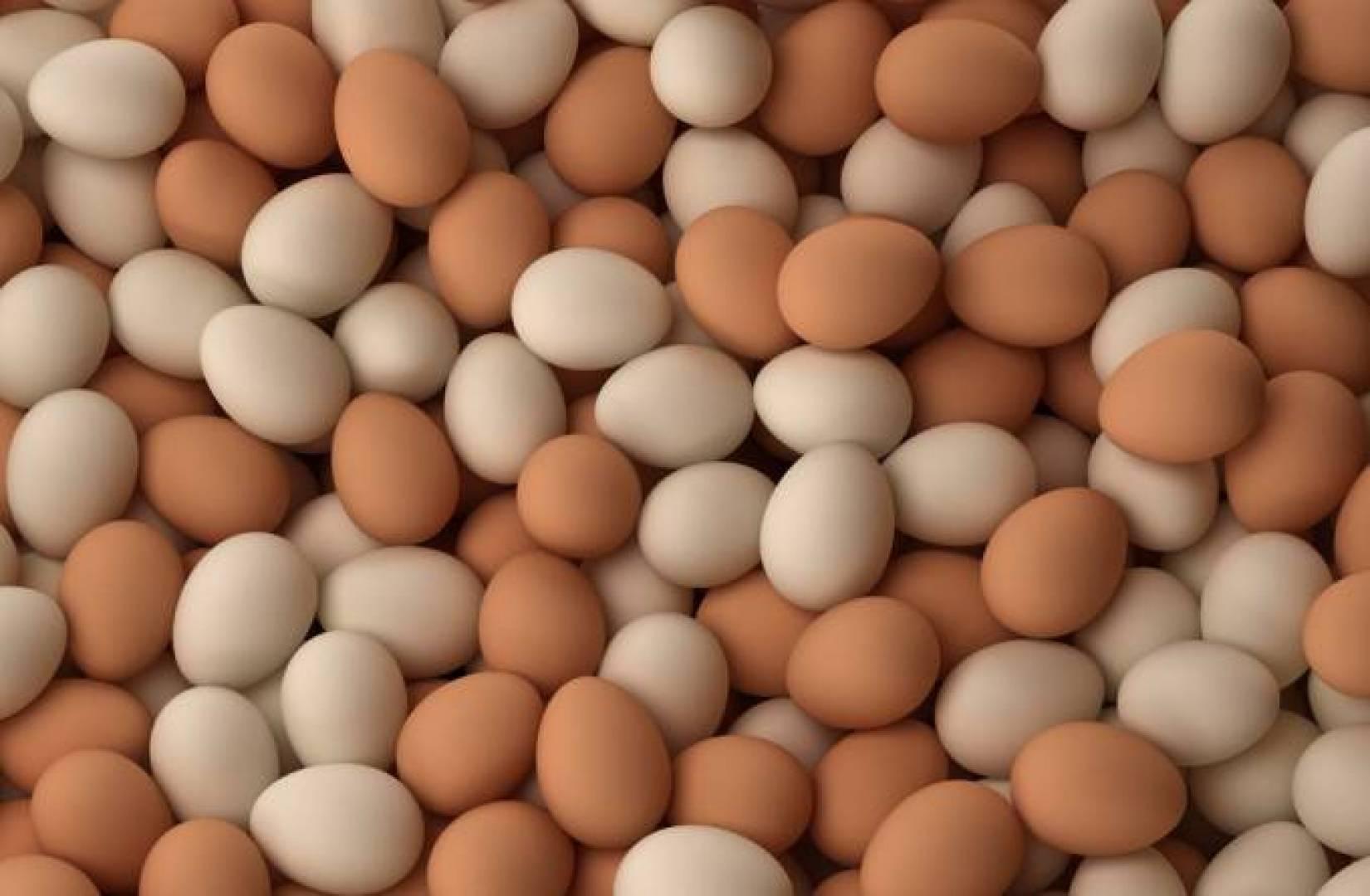 ما حكاية البيض المُرّ في نفطة ؟