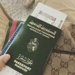في نفس المجموعة مع غامبيا وتنزانيا: جواز السفر التونسي في المرتبة 61 عالميّا