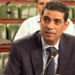 طارق الفتيتي: هذا التوجّه يجعل المحكمة الدستورية مسيّسة بامتياز