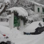 لمواجهة موجة البرد : وزار الفلاحة توفر الحطب والماء