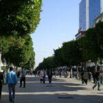 تثمينا للفضاءات العمومية وللحدّ من التلوث: بلدية العاصمة تغلق شارع بورقيبة أمام السيارات