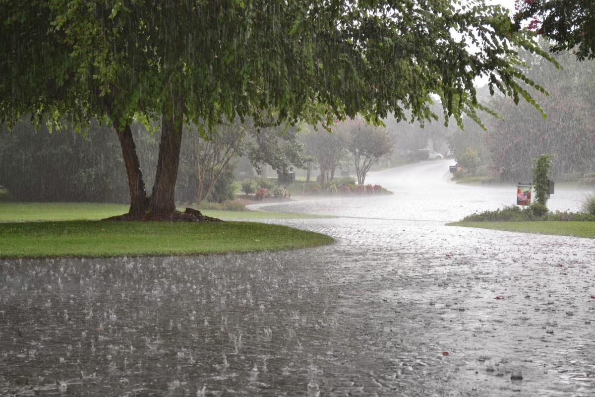 كميات الأمطار المُسجّلة بـ 11 ولاية
