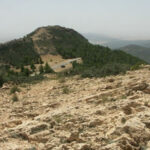 جبل السلوم/ القصرين: إرهابيون يعترضون طريق امرأتين