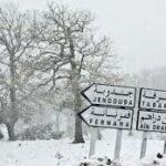 موجة البرد: استهلاك 195 ألف قارورة غاز يوميا بـ 4 ولايات