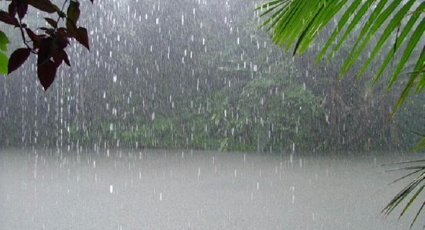 أعلاها بالمنستير: كميات الأمطار المُسجلة في 13 ولاية