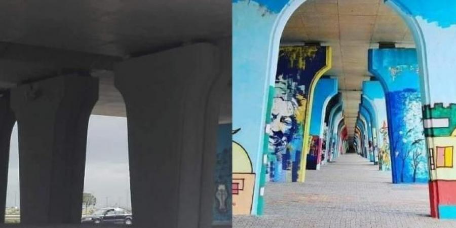 وزارة التّجهيز: لهذه الأسباب تمّ طلاء رسومات على قنطرة في العاصمة بالدّهن