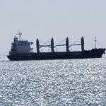الطاهري: 4 سفن ترابط بالبحر منذ 20 يوما بسبب عدم دفع الدولة ثمن الصفقة