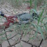 وزارة الدفاع : ارهابي الكاف من مواليد 1999 ومعركة لافتكاك جثته