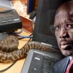 رئيس ليبيريا يغادر مكتبه هربا من الثعابين !
