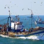 سوسة: إنقاذ 3 بحّارة علقوا في عرض البحر ليومين