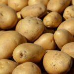 بـأربع ولايات: حجز 41 طنا من البطاطا وإعادة ضخها في الأسواق البلدية