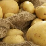 اتّحاد الفلاّحين يُحذّر من مخاطر البطاطا المصرية