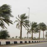 طقس اليوم: استقرار في درجات الحرارة ورياح قوية